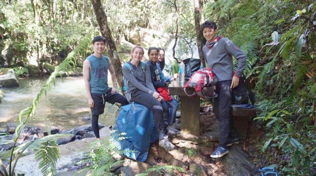 マダガスカルの熱帯雨林で環境保護活動に取り組む高校生ボランティアたち